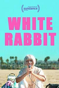 White Rabbit | Bmovies