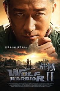 Wolf Warriors 2 | Bmovies