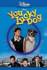 You Lucky Dog | Bmovies